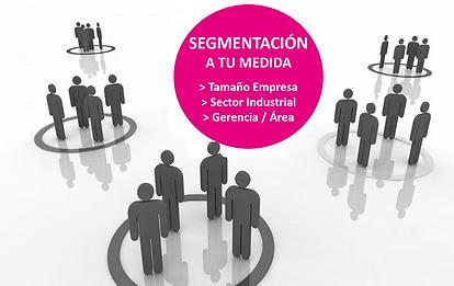 Segmentacion.png