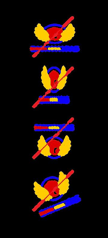 SIA_logo_improper_usage-01.png