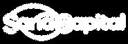 SanaCapital_logo_white.png