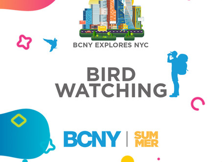 Another Copy of Bird Watching - BCNY Explores NYC