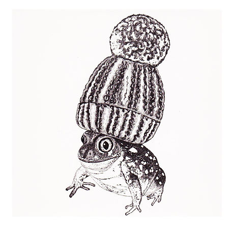 FrogINPom.jpg