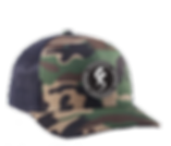 Stonewall_camo hat.png