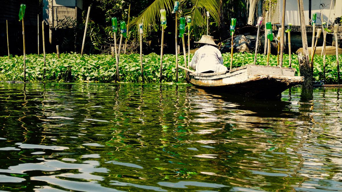 Bangkok River 2015