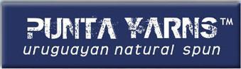 Punta logo small.jfif