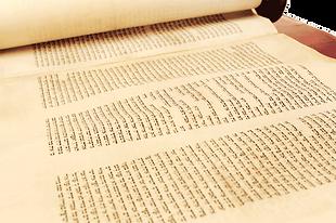 Torah-8.png