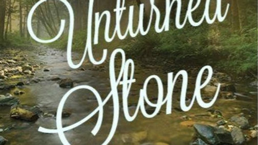 No Unturned Stone - A Mother's Quest