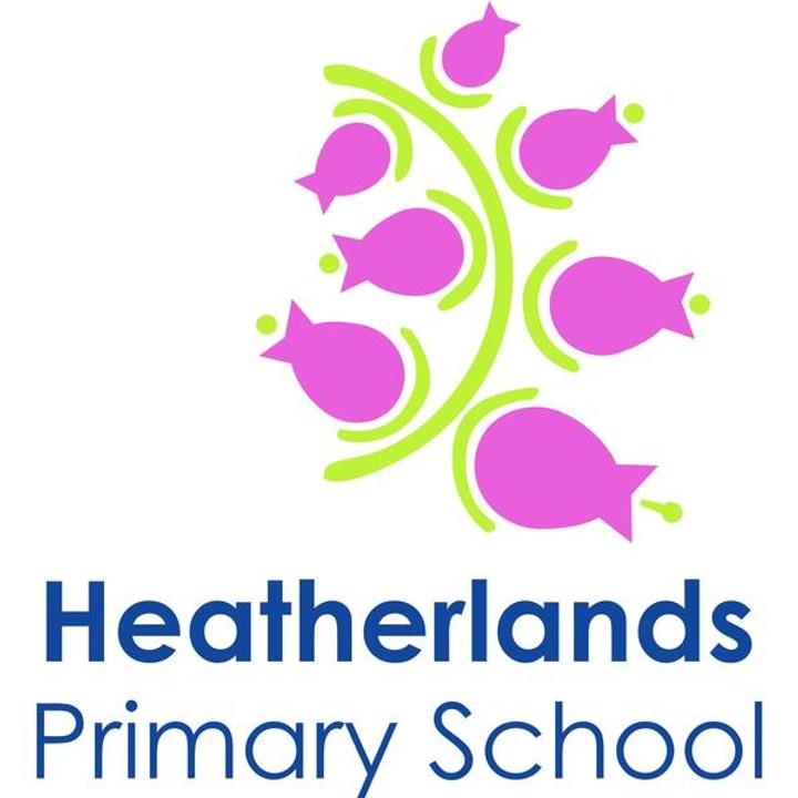 Heatherlands Primary Year 5 + 6 Dodgeball