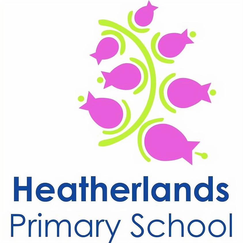 Heatherlands Primary Year 1, 2, 3, 4 + 5 Cricket