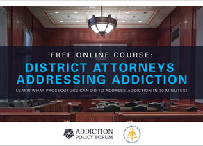 Initiative to Educate Prosecutor's About Addiction