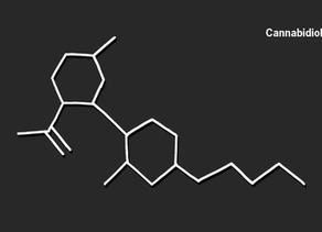 Can CBD Help in the Treatment of and Recovery from Opioid Use Disorder?