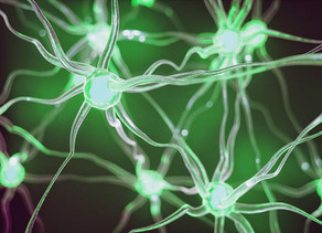 Now What? THC Exposure and the Adolescent Brain