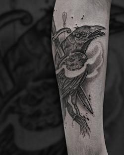 Tattoo Zincik - Crow black tattoo