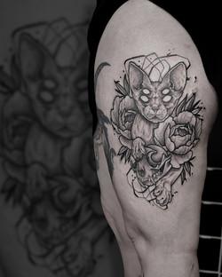 Tattoo Zincik - Sphynx Cat skull