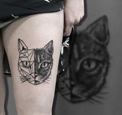 Geometric cat half