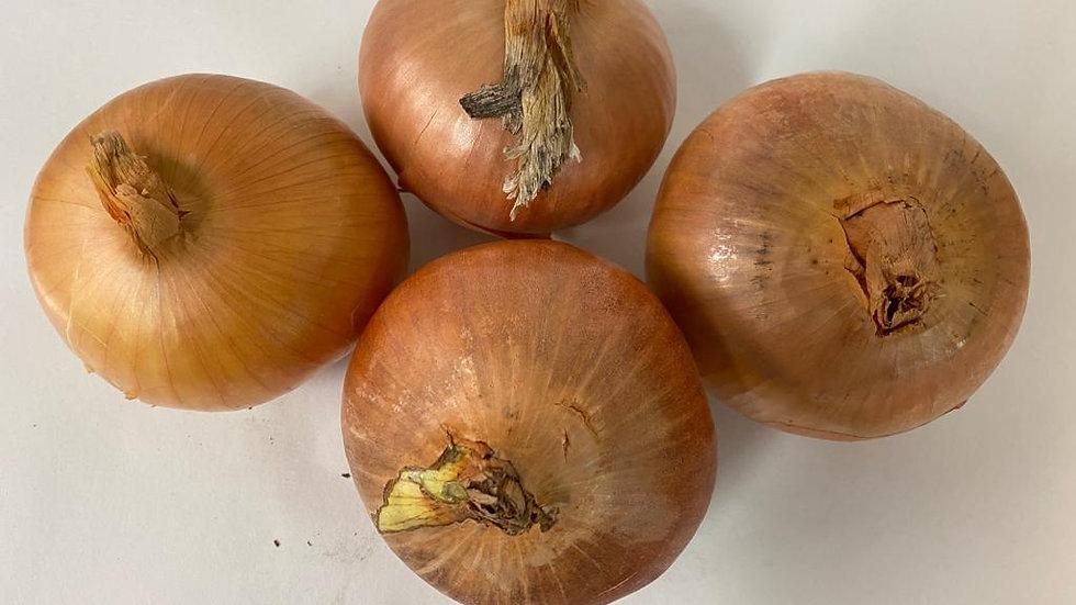 Onions - Large