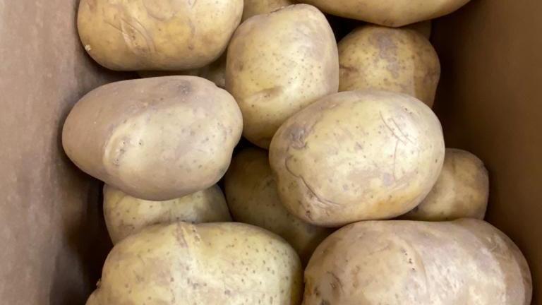 Potatoes - Bakers x 40