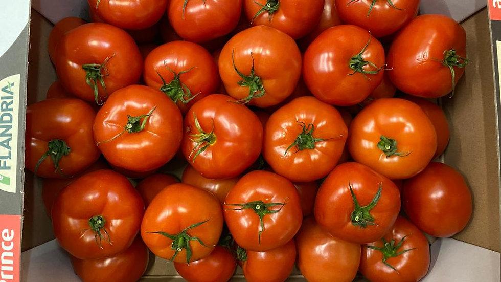 Tomatoes - Salad/M