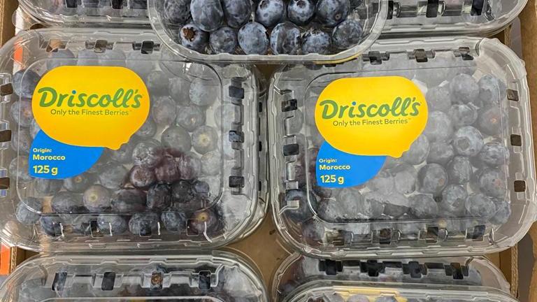 Blueberries x 125g