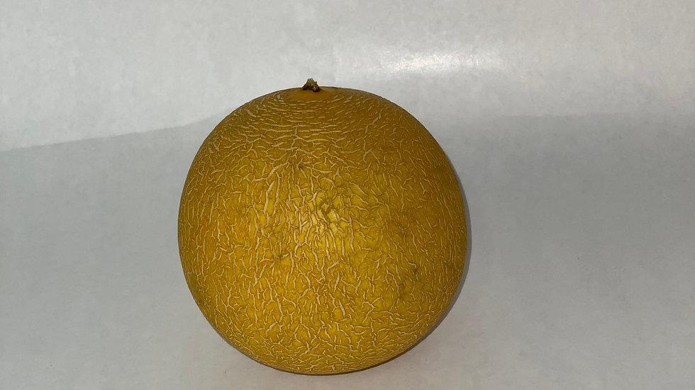 Melon - Galia