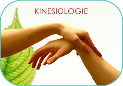 Kinésiologie