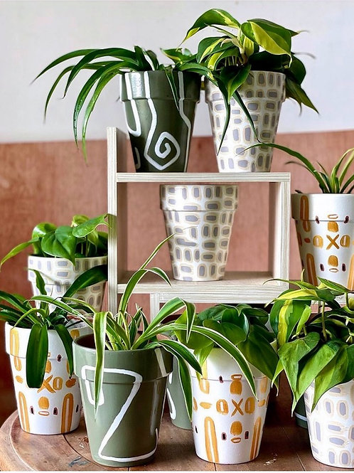 Hand Painted Pots with Plants by Presh and Green**