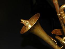 Detail Trompetenbaum
