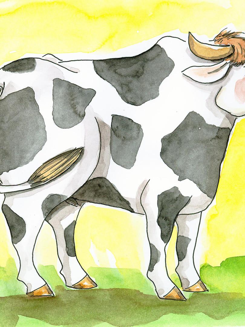 Bauernbörse: Tierkarte Stier