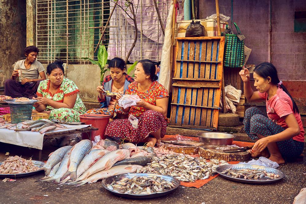 Fish market Yangon Myanmar