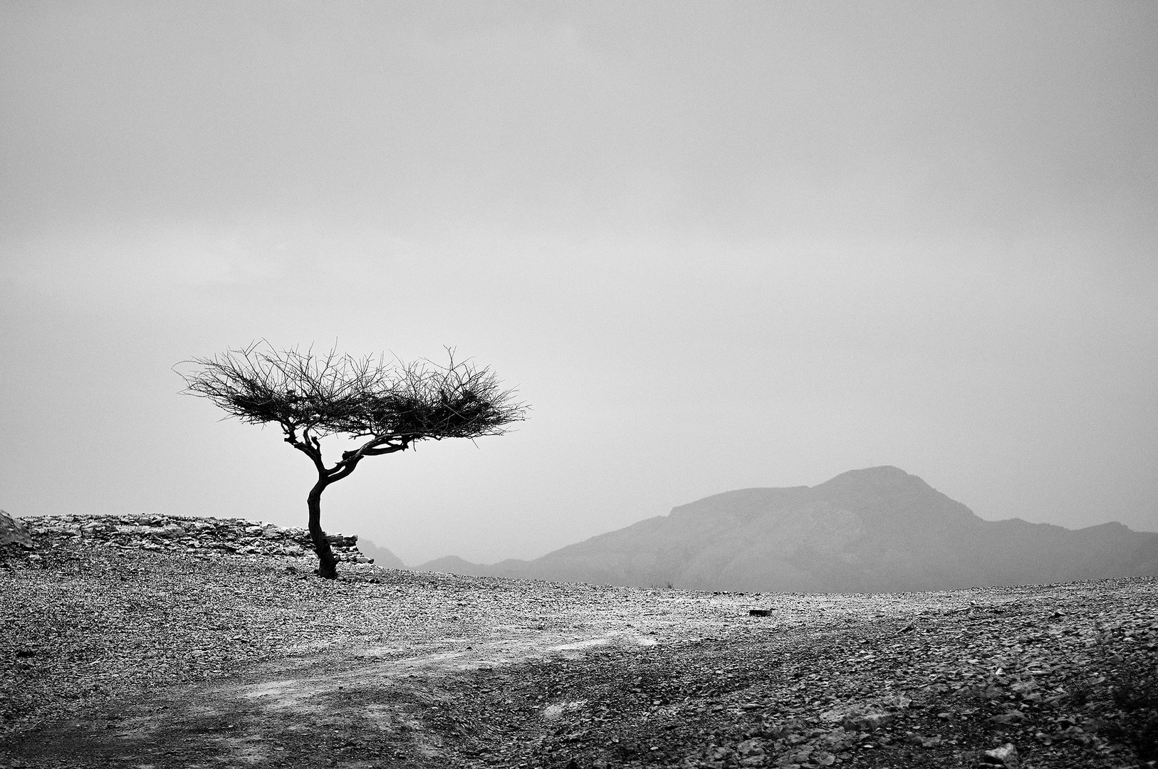 View in Musandam, Oman