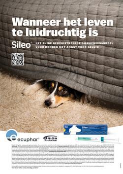 Advertentie Sileo