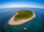 Apo_Island_of_Apo_Reef_Natural_Park.jpg