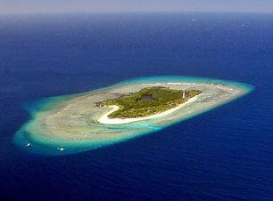Apo_Mayor_Apo_Reef-Mindoro_ByYvetteLee_U
