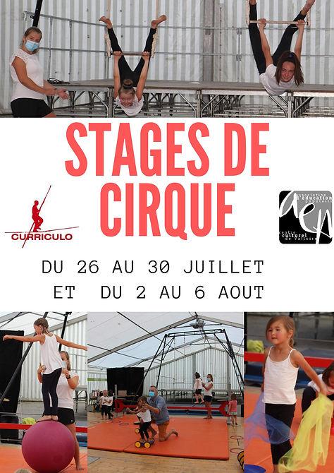 Affiche cirque-compressé-page-001.jpg