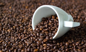 coffee cup and beans.jpg