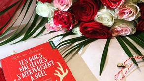 Les ours mal léchés s'apprivoisent à Noël - Valentine Stergann