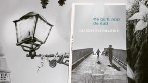 Ce qu'il faut de nuit - Laurent Petitmangin