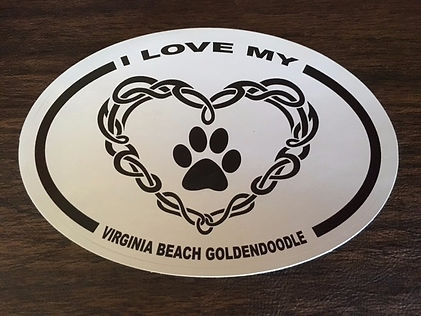 Virginia Beach Goldendoolde Logo