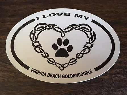 Virginia Beach Goldendoodle Logo