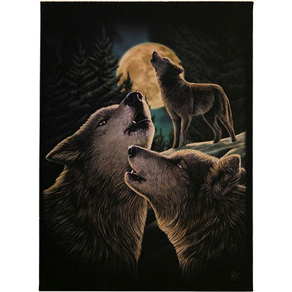Wolf Song - Lisa Parker Canvas