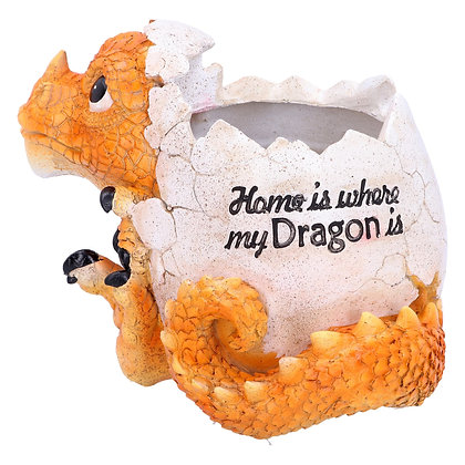 Home is Where My Dragon Is Pot 16cm