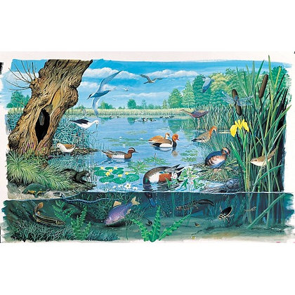 Ponds and Lakes 1000 Piece Jigsaw Puzzle