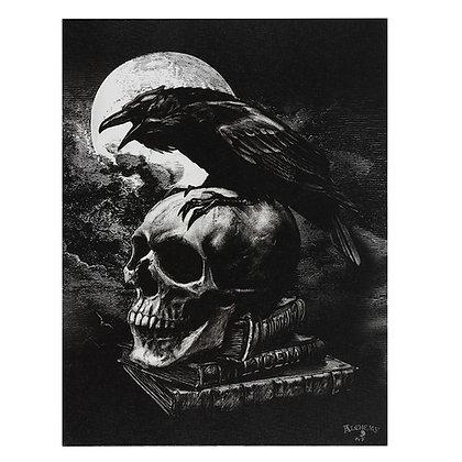 Poe's Raven Canvas - Alchemy