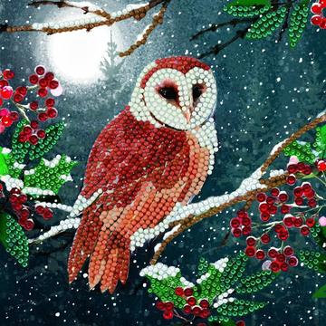 Barn Owl Crystal Art Card Kit