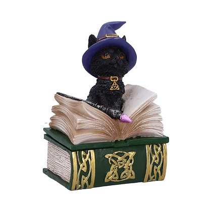 Binx Witches Familiar Black Cat and Spellbook Box - 11cm