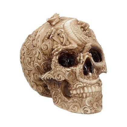 Cranial Drakos Skull Ornament 19.5cm