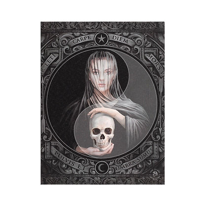Beyond The Veil - Anne Stokes Canvas
