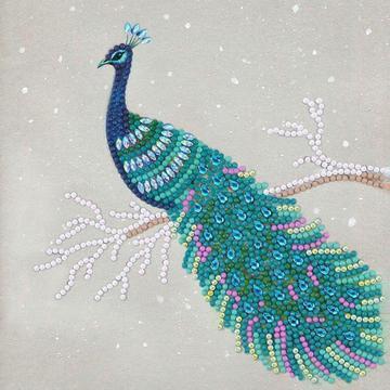 Pretty Peacock Crystal Art Card Kit