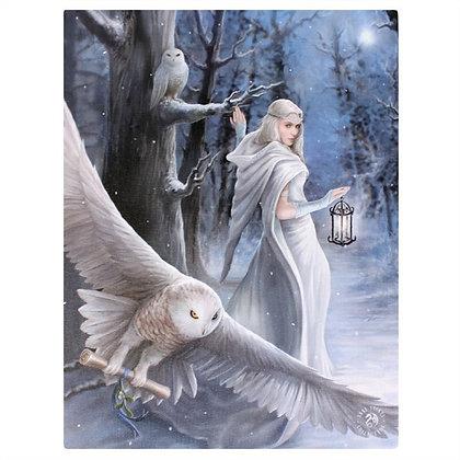Midnight Messenger - Anne Stokes Canvas