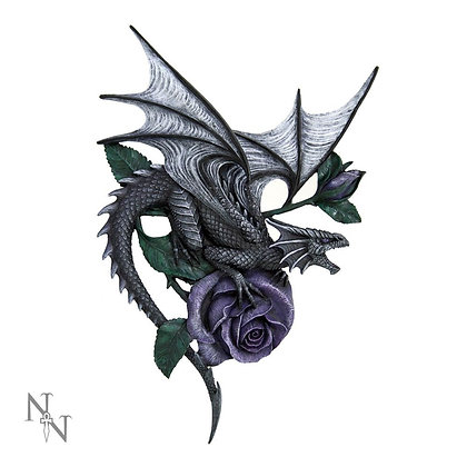Dragon Beauty Wall Plaque - Anne Stokes - 40cm