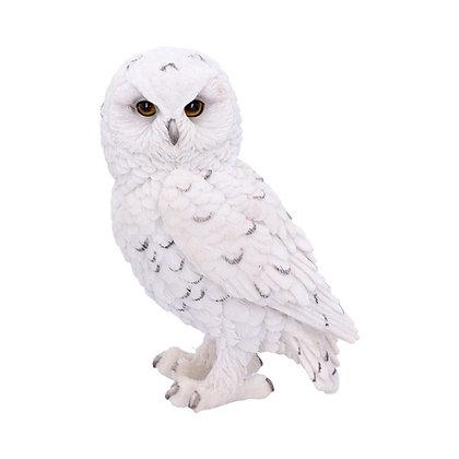 Snowy Watch White Owl Ornament - 13.3cm
